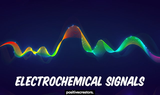 electrochemical signals